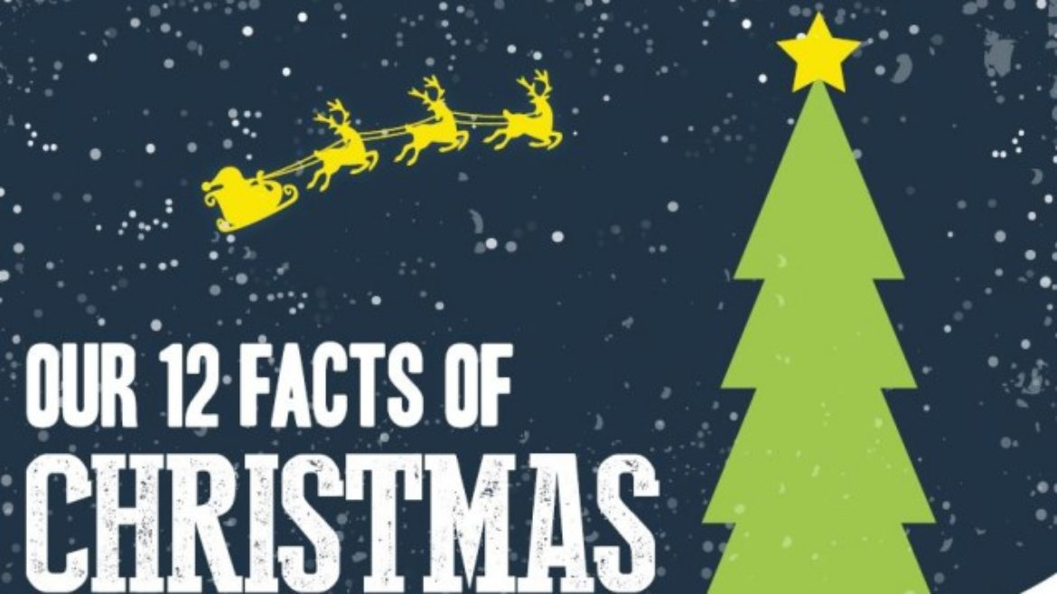 Facts About Christmas.12 Facts Of Christmas Christmas New Year S Is Just